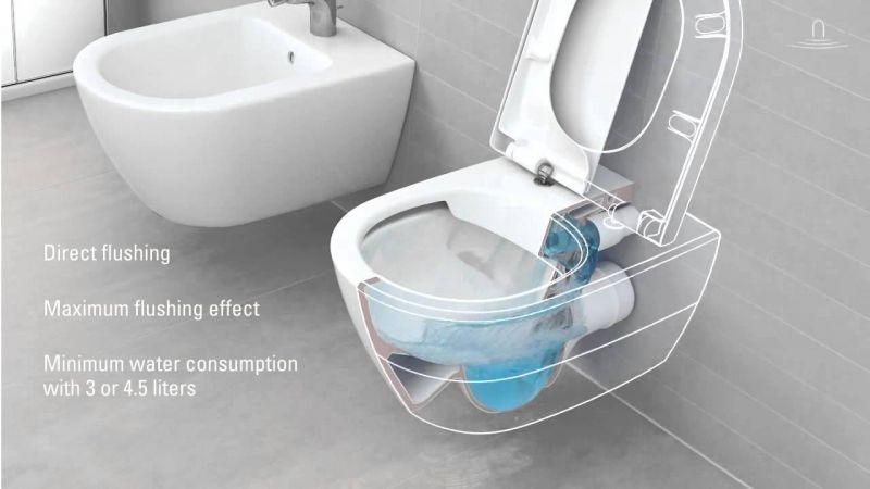 direct flush tehnologija